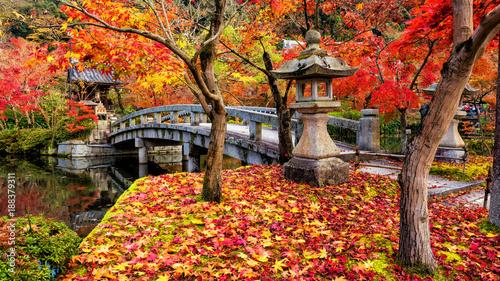 Poster de jardin Kyoto Eikando Zenrinji fall garden, Kyoto