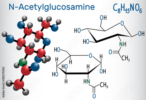 Canvastavla N-Acetylglucosamine (NAG) molecule, is the monomeric unit of the chitin and polymerized with glucuronic acid, it forms hyaluronic acid