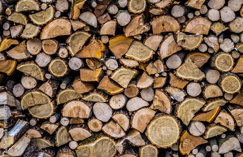 Foto op Aluminium Brandhout textuur Firewood. Scenic background in rustic style