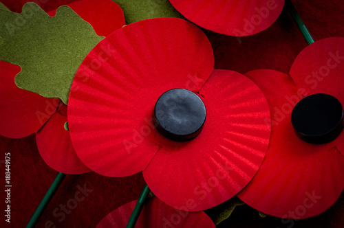 Photo Remembrance day in the UK and salute to veterans of the armed forces concept wit