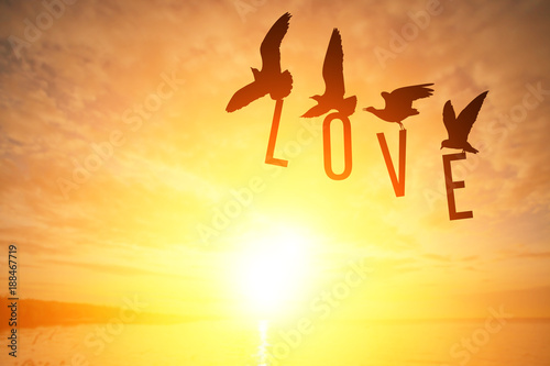 Foto En Lienzo - Silhouette Seagull bird holding LOVE text on Sunset background in Valentine's Day Concept