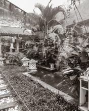 Tropical Patio Garden Typical ...