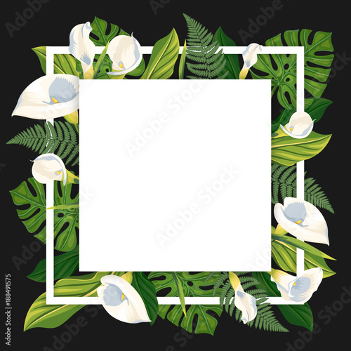 Fototapeta Square template with calla lilies and tropical leaves