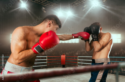 Láminas  Boxing sparring boxers