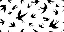 Bird Seagull Swallow Pigeon Vector Seamless Pattern Isolated Wallpaper Background