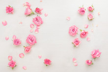 Roses Background. Various Pink...