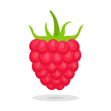 Sweet Berry Isolated On White Background. Vector Icons Set. Illustration With Raspberry