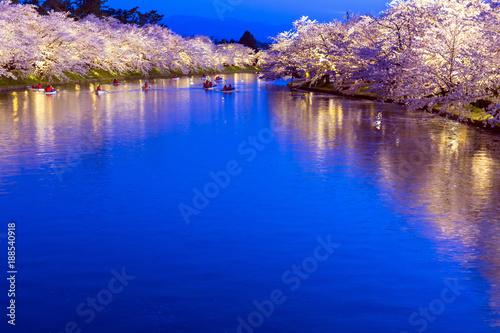 In de dag Donkerblauw 弘前公園の夜桜ライトアップ
