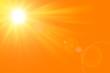 canvas print picture - Sfondo astratto soleggiato di estate di natura con il sole splendente
