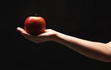 Red Ripe Apple On Female Hand,...
