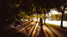 Men Riding Bike In The Park