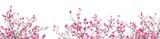 Fototapeta Kwiaty - Plum Blossom in early spring. Located in Plum Blossom Hill, Nanjing, Jiangsu, China.