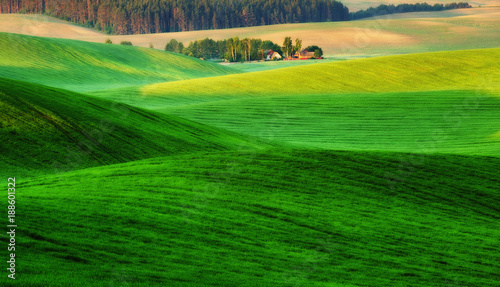 Foto op Plexiglas Groene hilly field. spring morning. a beautiful sunrise in the field