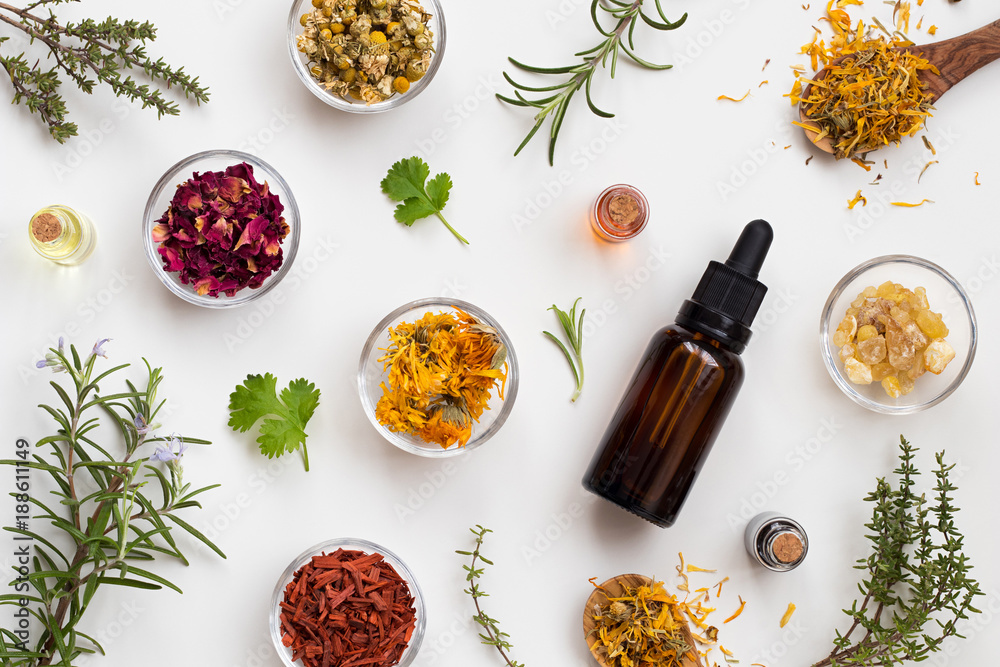 Fototapety, obrazy: Selection of essential oils and herbs on a white background, top view
