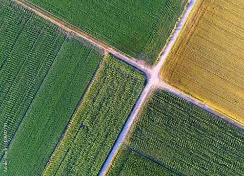 Fotobehang Cultuur Top view of agricultural parcels