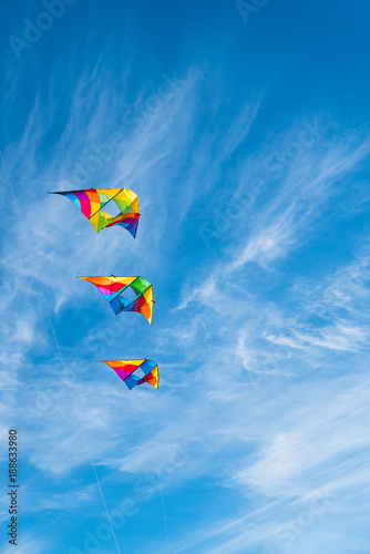 Fotografie, Obraz  Flying Kites on a blue sky