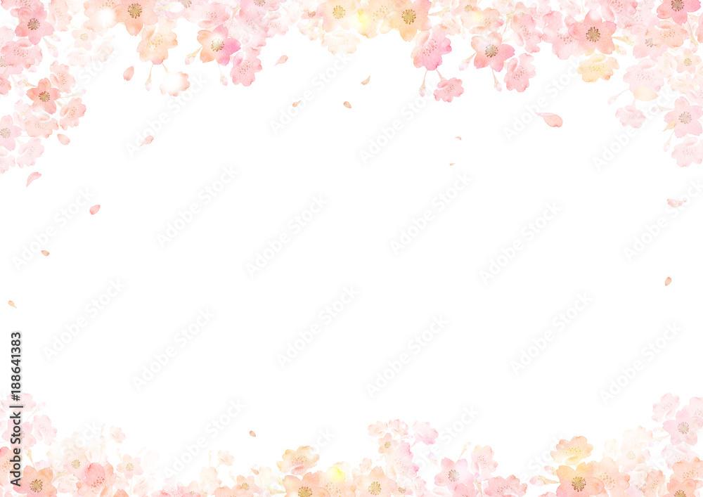 Fototapety, obrazy: 春 桜 背景 フレーム
