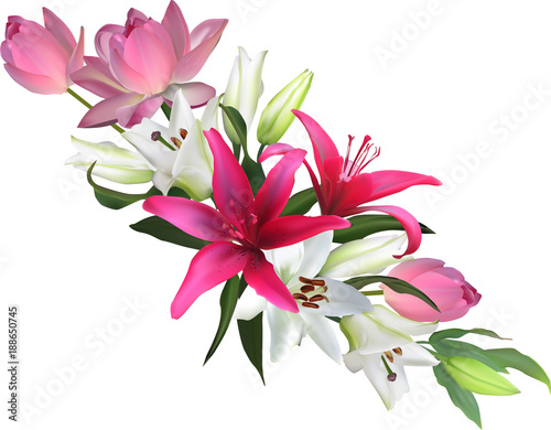 straight design from lotus and lily flowers on white © Alexander Potapov