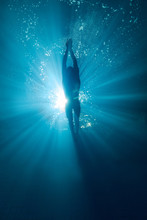 Underwater Picture Of Professional Swimmer Training In Swimming Pool