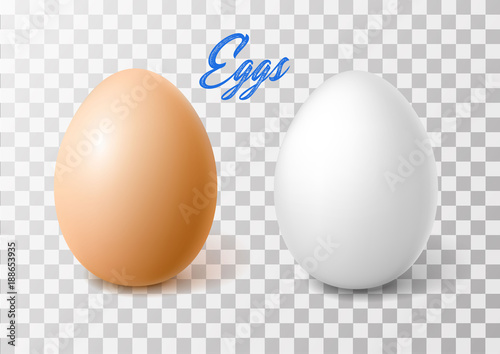 Vector realistic chicken brown egg, easter spring Fotobehang