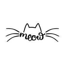 Meow. Cats Ears And Mustaches....