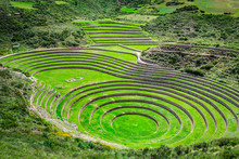 Unique Inca Circular Terraces At Moray (Ancient Agricultural Experiment Station) - Peru, Latin America