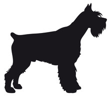 Giant Schnauzer - Vector Black Dog Silhouette Isolated