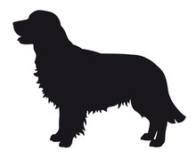 Golden Retriever - Vector Blac...