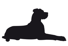 Great Dane Lying - Vector Black Dog Silhouette Isolated