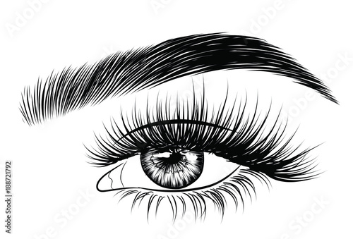 Slika na platnu Hand-drawn woman's sexy luxurious eye with perfectly shaped eyebrows and full lashes