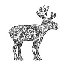 Drawing Zentangle For Deer Adu...