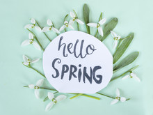 Hello Spring Calligraphy Note ...