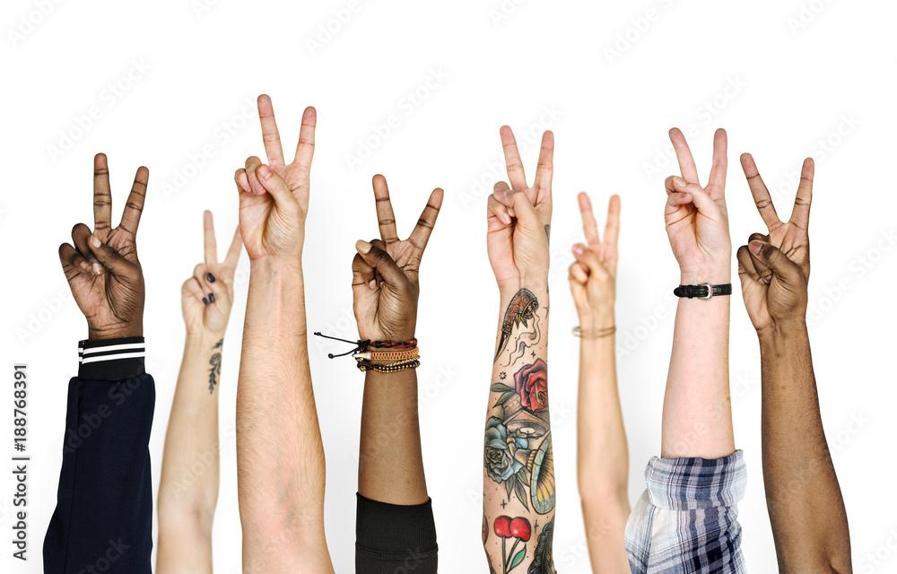 Fotografie, Tablou  Variation hands with peace sign