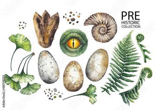 Fototapeta Watercolor prehistoric collection