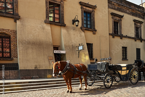 Obraz na plátně Horse with a carriage on the street of the old town.