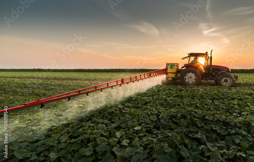 Leinwand Poster Tractor spraying pesticides on vegetable field with sprayer at spring