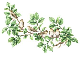 NaklejkaWatercolor Songbird on Tree Branch
