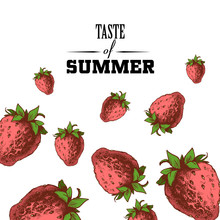 Taste Of Summer Poster Design ...