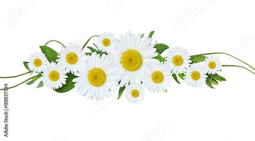 In de dag Madeliefjes Daisy flowers and green grass arrangement