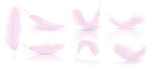 Vector Realistic 3d Set Of Pink Bird Or Angel Feathers In Various Shapes, Isolated On Background. Symbol Of Lightness, Innocence, Heaven, Literature And Poetry. Decoration Element For Your Design