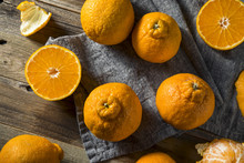 Fresh Raw Sumo Oranges