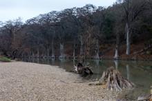Guadalupe River In Winter