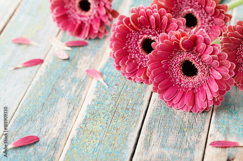 Poster Gerbera Deep color bouquet from beautiful gerbera daisy flowers on vintage wooden background. Greeting card for mother or womans day..