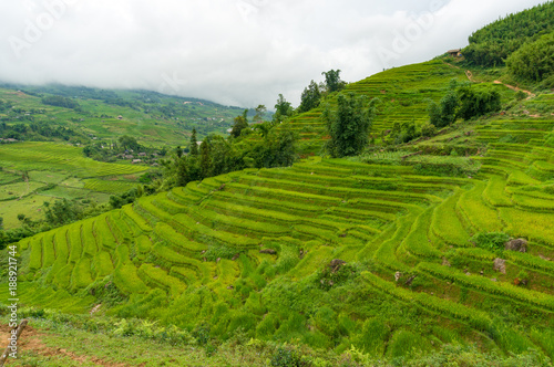 Foto  Picturesque hills with layers of green rice terraces