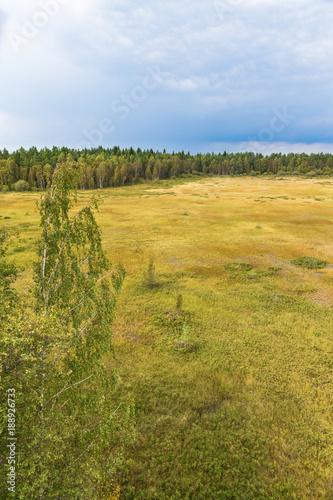 Valokuva  Marshland landscape view