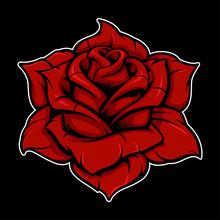 Rose (color Version)