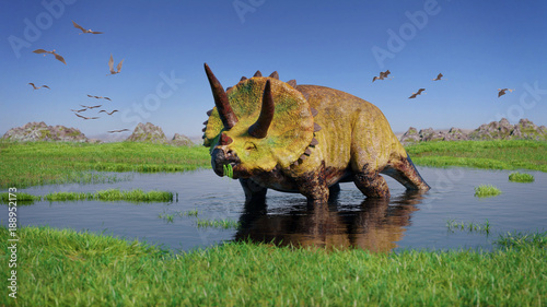 Obraz na plátně Triceratops horridus dinosaur and a flock of Pterosaurs from the Jurassic era ea