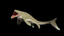 Liopleurodon, Extinct Giant Aq...