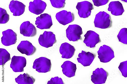 Obrazy wieloczęściowe fioletowe płatki kwiatów