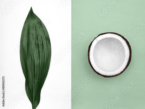kokosowe-mieszkanie-lezal-pol-kokosowy-w-skorce-i-duzy-jasny-zielony-lisc-leza-na-tle-dwoch-odcieni-widok-z-gory-modne-kolorowe